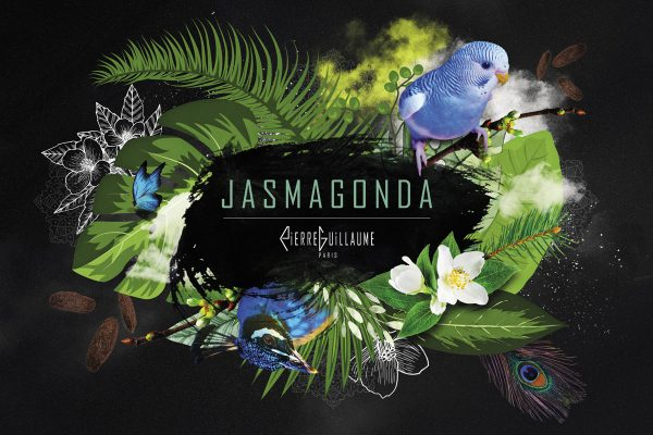 23.1 JASMAGONDA – COLLECTION PIERRE GUILLAUME PARIS