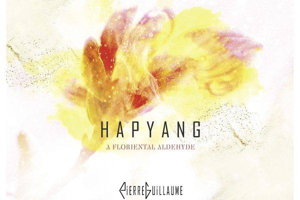 15.1 HAPYANG – COLLECTION PIERRE GUILLAUME PARIS