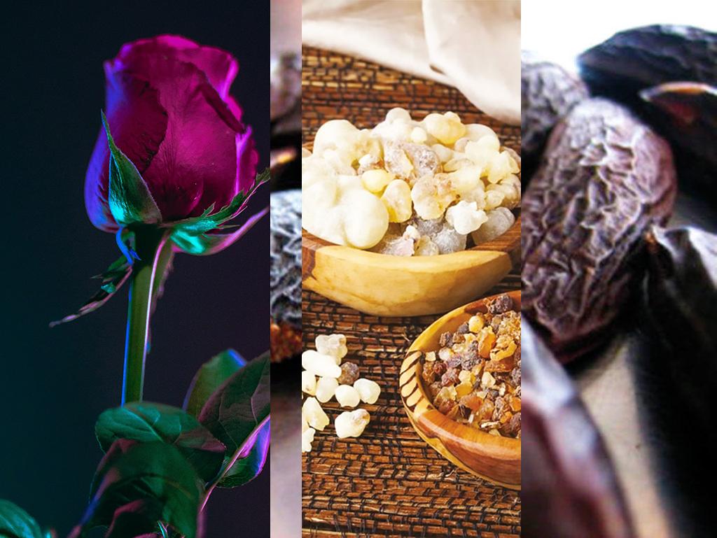PIERRE_GUILLAUME_PARIS_PARFUM_CONTEMPLATION_AU_ROYAUME_DES_FEMMES-Parfum Rose poivrée, Tonka, Benjoin