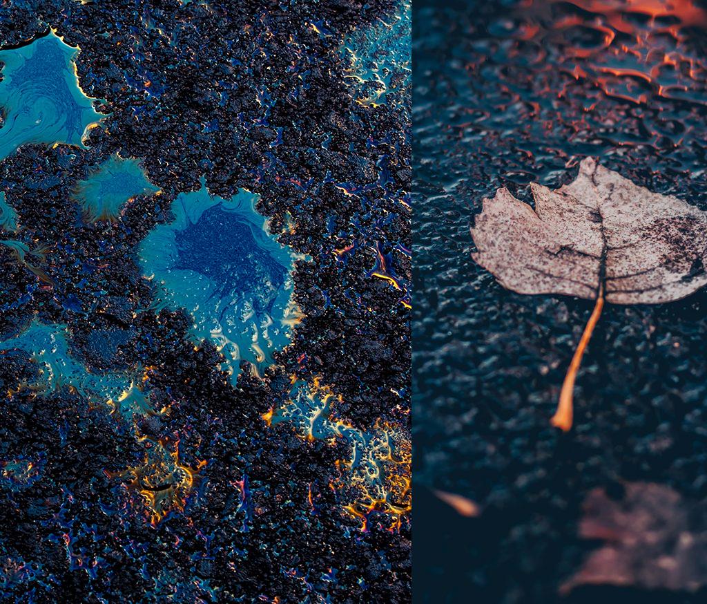 PIERRE_GUILLAUME_PARIS_PARFUM_CONTEMPLATION_BAGATELLE-ROMA-Parfum Roses anciennes, Feuilles de Cassis, Pétrichor, Pluie, Essence et cuir-2