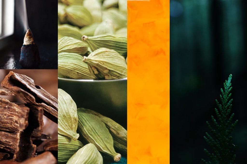 Parfum Femme en Smoking, floral, boisé épicé, calla noir, iris, miel, cèdre - Ambiance2